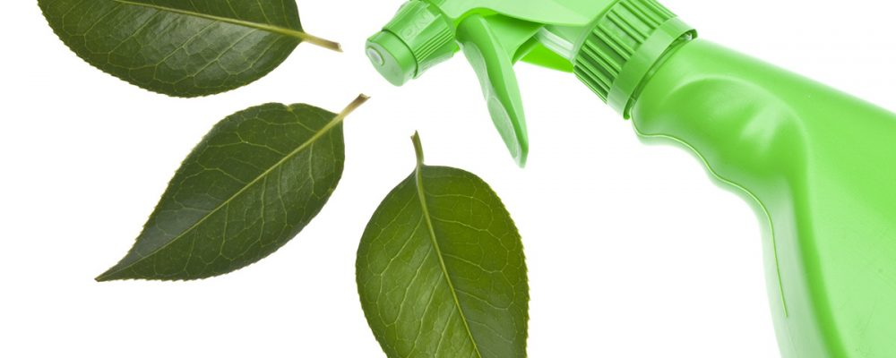 Green Cleaning and It's Benefits